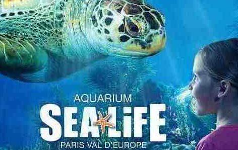 Sea Life Val d'Europe: 20 ans de découverte
